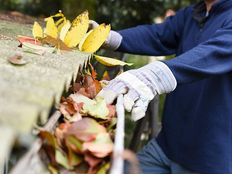 Nettoyage de gouttières/ Revêtement extérieur